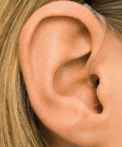 BTE Open Fit In Ear